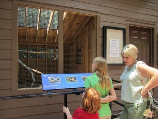 visitors-at-raptor-house-Large