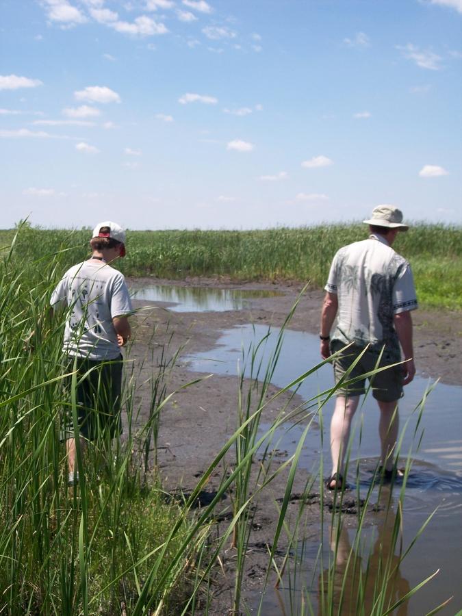 1800-hike-in-wetland