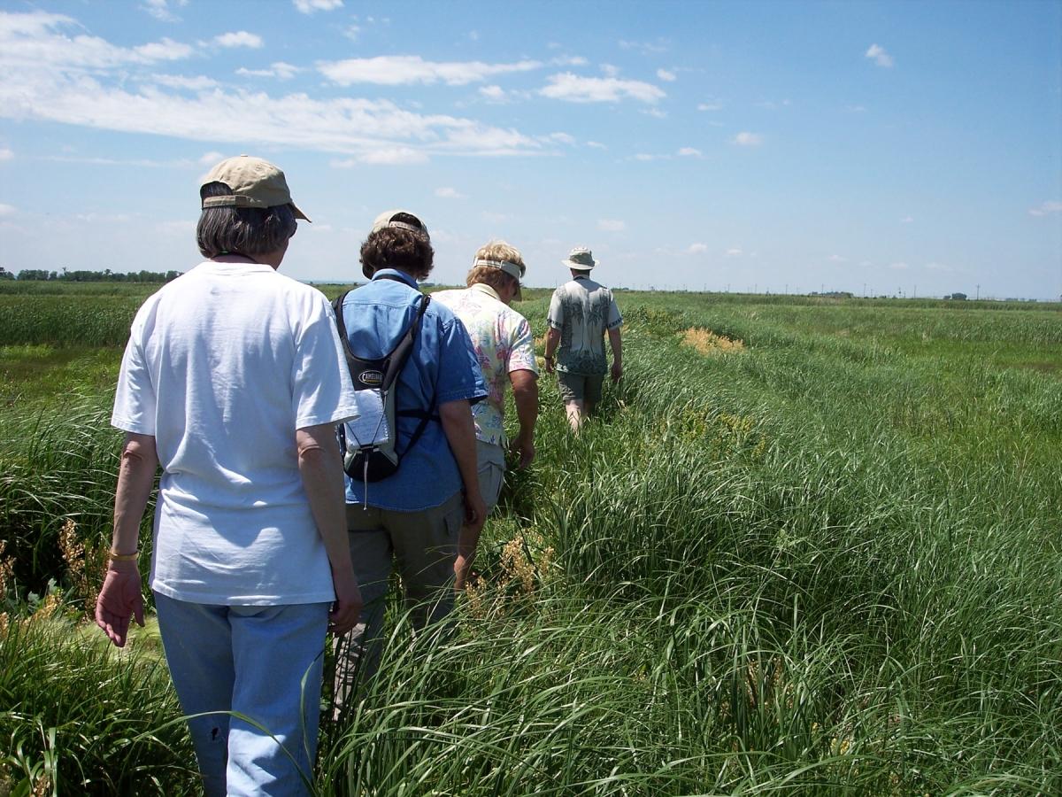 1800-wetland-hike