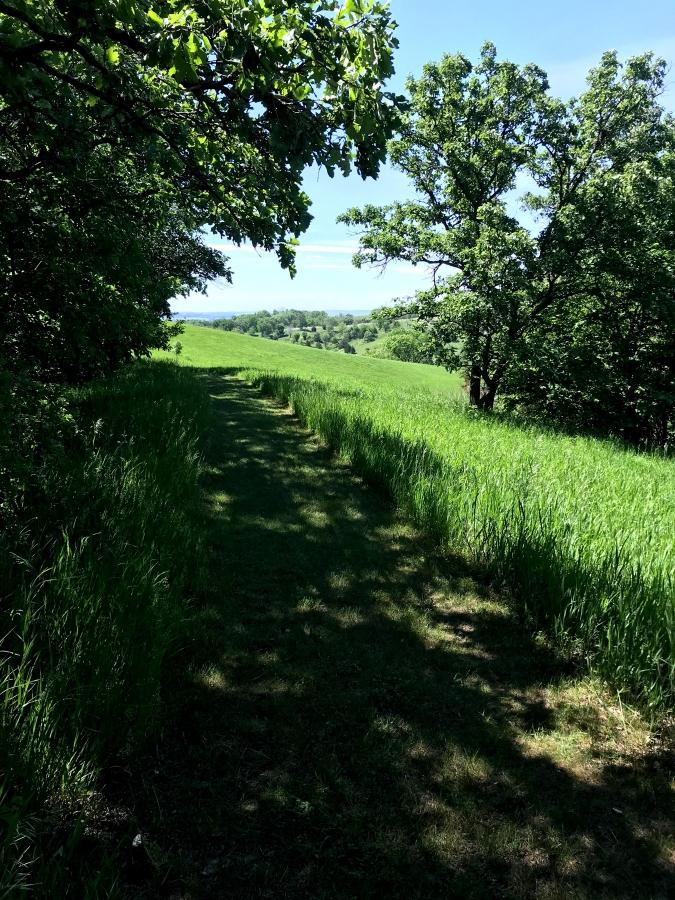 1800-SW-trail
