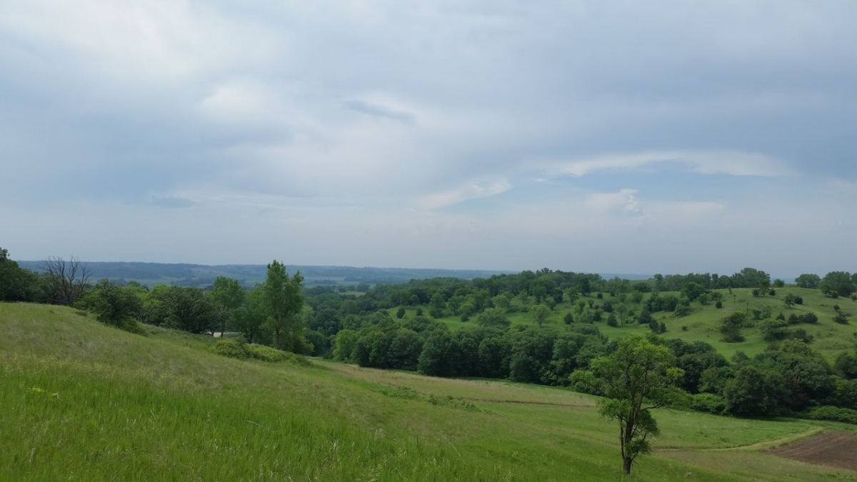 1800-Southwood-view