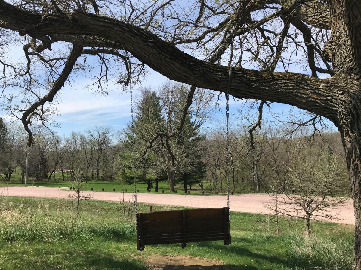 1800-swing-on-oak
