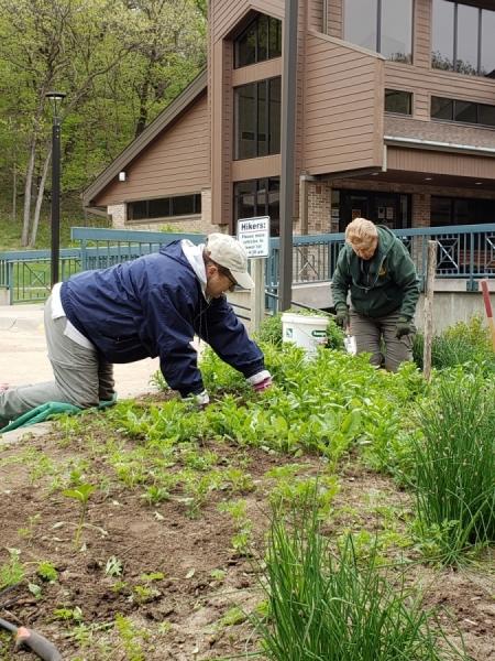Barb-Ginger-spring-garden